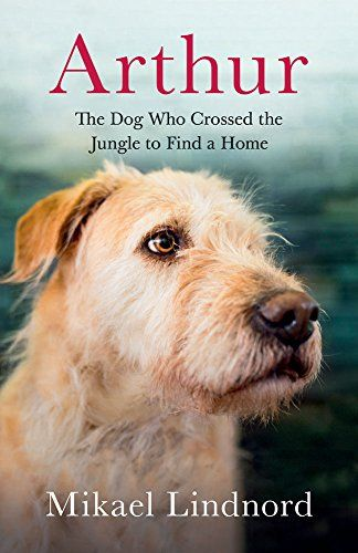 Arthur: Le chien qui a traversé la jungle pour trouver un chez-soi par Mikael Lindnord