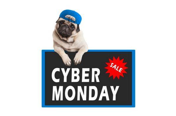 11 Pawsome cyber lundi animalier offres