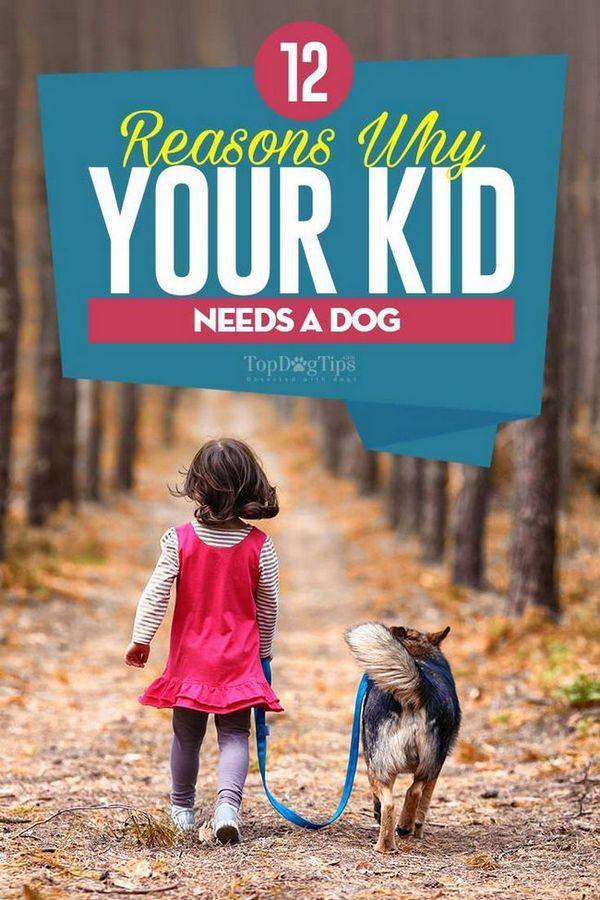 12 Raisons pour lesquelles votre enfant a besoin d`un chien