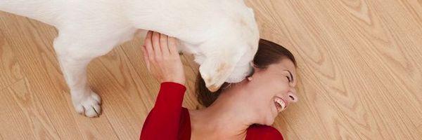 14 Cas scientifiquement prouvés où les chiens sont meilleurs que les médecins