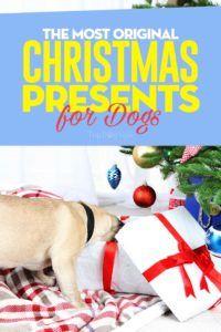 15 Cadeaux de Noël vraiment originaux pour chiens