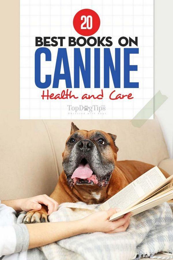 20 meilleurs livres sur la santé et les soins des chiens