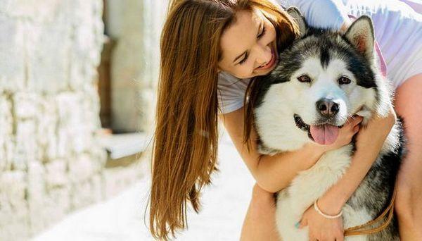 Races de chien les plus féminines