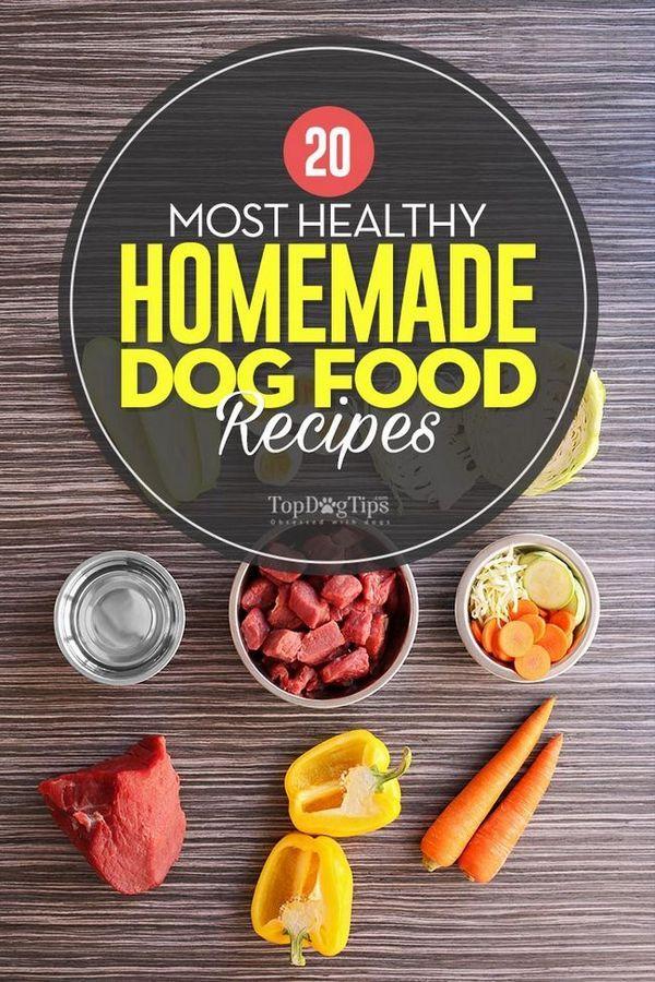 20 Recettes de nourriture pour chiens maison les plus saines