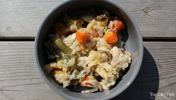 recette hypoallergénique de nourriture pour chien
