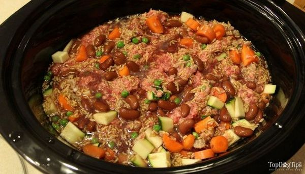 Recette de nourriture pour chien Ragoût de boeuf Crock Pot