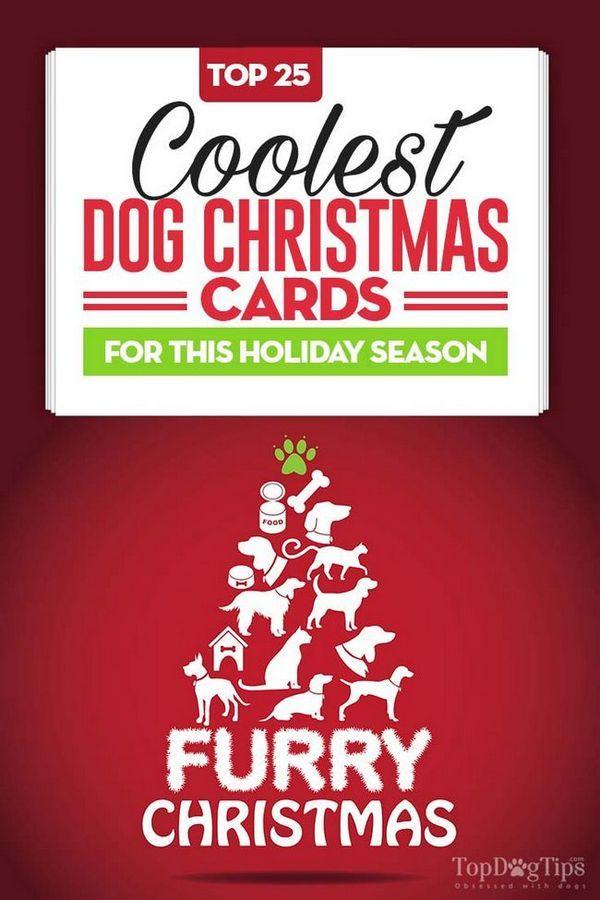 25 Cartes de Noël chien cool et unique