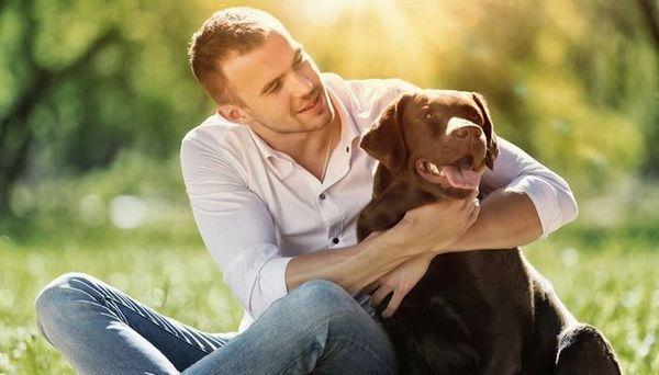 Avantages de posséder un chien