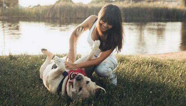 4 Façons dont la propriété de chien rend les gens heureux (basé sur la recherche)