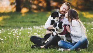 La propriété des chiens rend les gens heureux