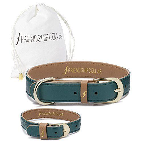 Collier de chien collier d`amitié et ensemble de bracelet assorti