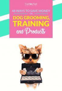 48 Façons d`économiser de l`argent sur le toilettage, la formation et les fournitures pour chiens