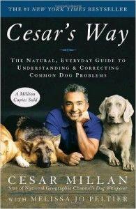 César's Way