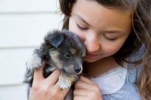 5 Faits sur les chiens pour les enfants