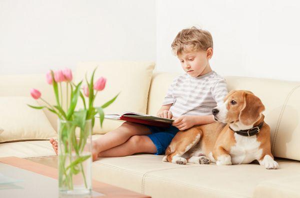5 Livres pour chiens incontournables pour les enfants