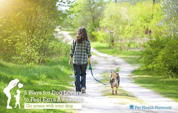 5 Façons pour les amoureux des chiens de se sentir super génial