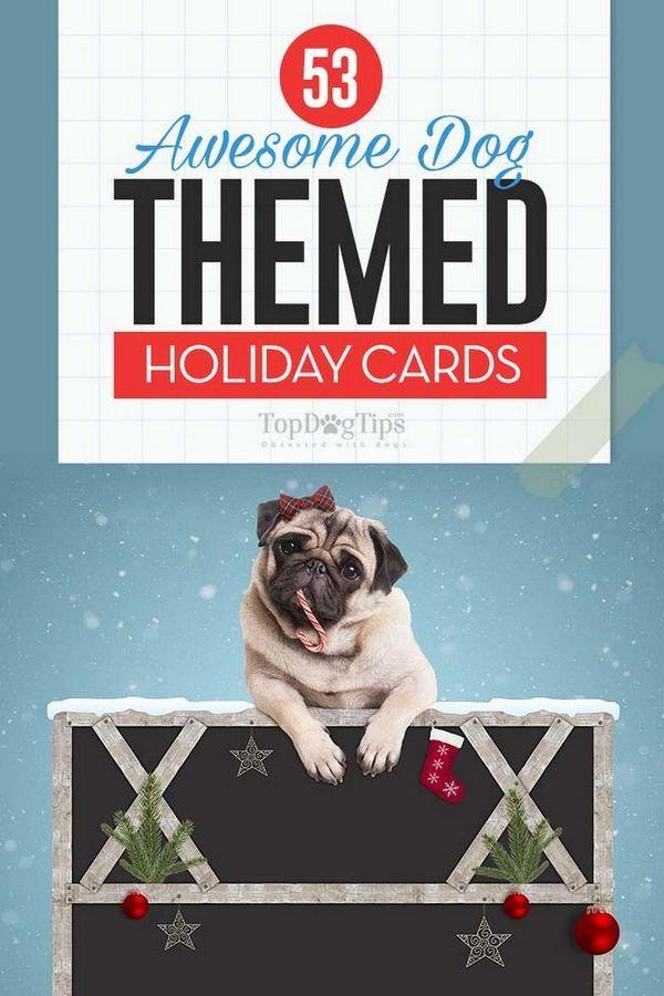50 Cartes de vacances de chien les plus impressionnantes que vous pouvez trouver