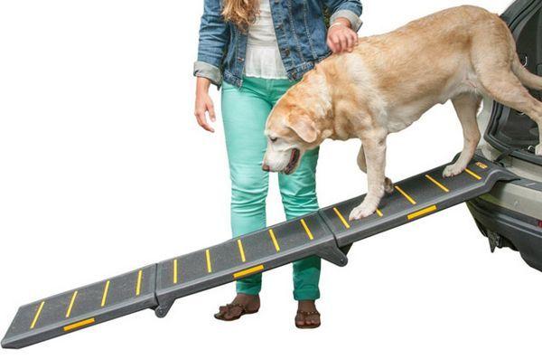 rampe de voiture pour animaux de compagnie