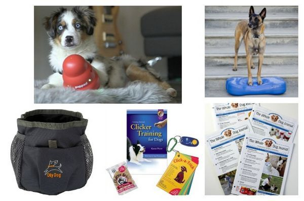 7 Cadeaux pour les personnes qui aiment la formation de chien
