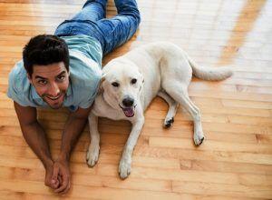 Plancher de linoléum pour chiens