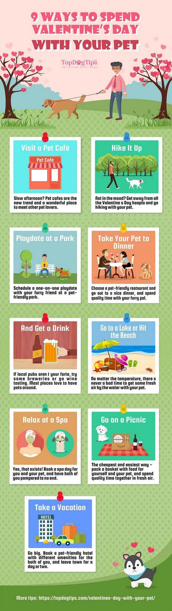 9 Façons de passer la Saint-Valentin avec votre animal de compagnie [infographie]