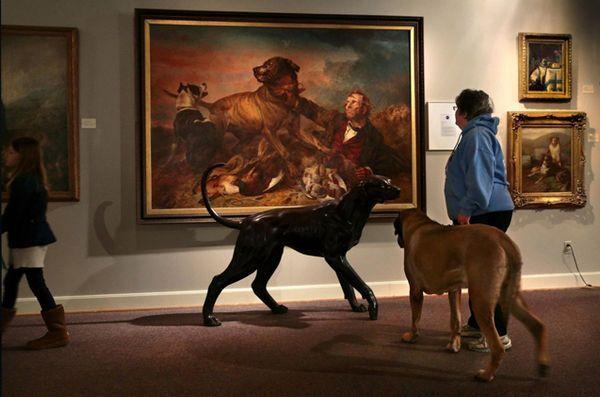 Akc musée du chien se dirige vers New York