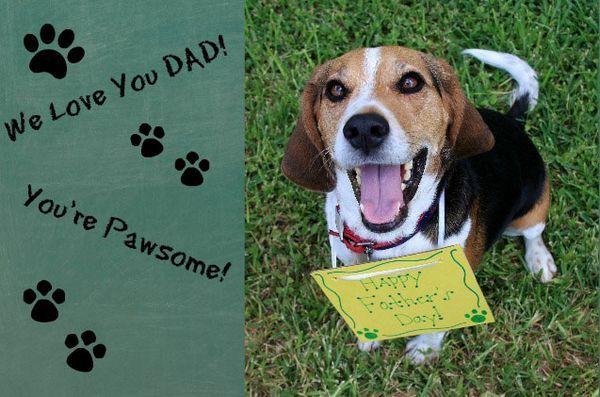 Demandez aux dogfathers poilus: planifier une fête des pères frugale
