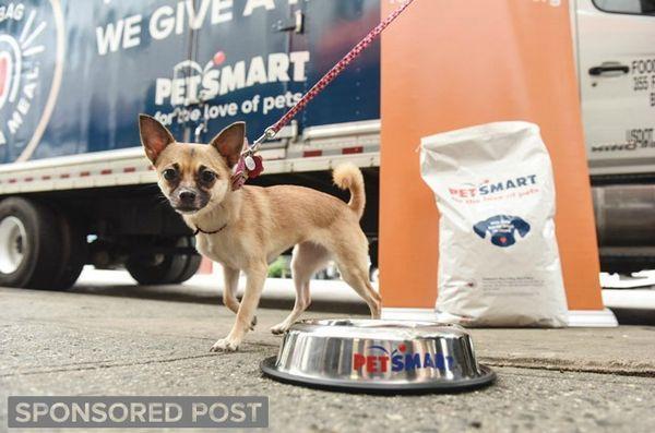 Achetez un sac et donnez un repas aux animaux dans le besoin pendant la saison des fêtes