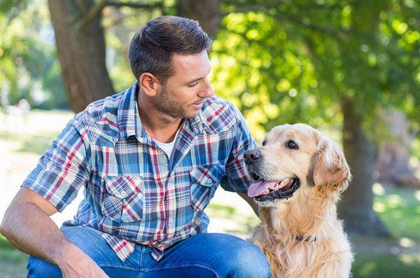 Des conseils de rencontres avec un chien fou