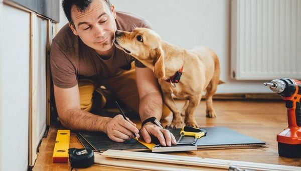 Diy dog stairs: comment faire ses propres pas de chien