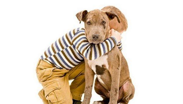 Vos enfants savent-ils comment être autour des chiens?