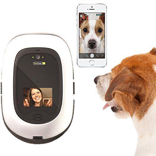 Concours: Petchatz HD Pet Camera (valeur de 380 $)