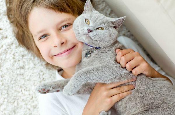 La subvention Habri aide à étudier l`impact de l`adoption de chats abris par des enfants autistes