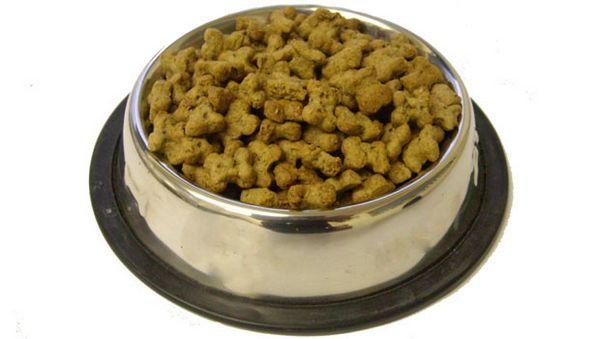Nourriture beagle saine