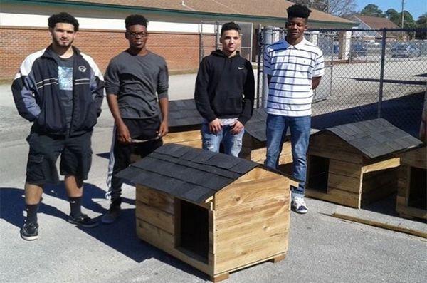 Les lycéens aident les chiens sans-abri en construisant des niches à chiens