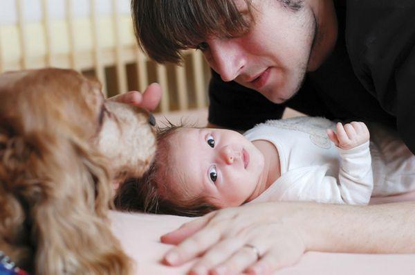 Comment présenter votre chien à un nouveau bébé