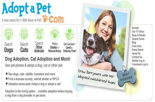 Intéressé par les animaux de compagnie pour adoption? Adoptapet a des milliers de personnes à la recherche d`un foyer pour toujours