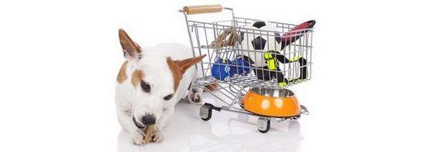 Les meilleures offres de janvier sur les produits pour chiens