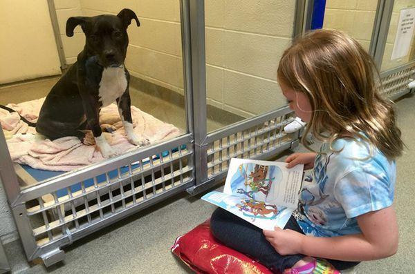 Les enfants qui ont du mal à lire trouvent des auditeurs attentifs chez les chiens