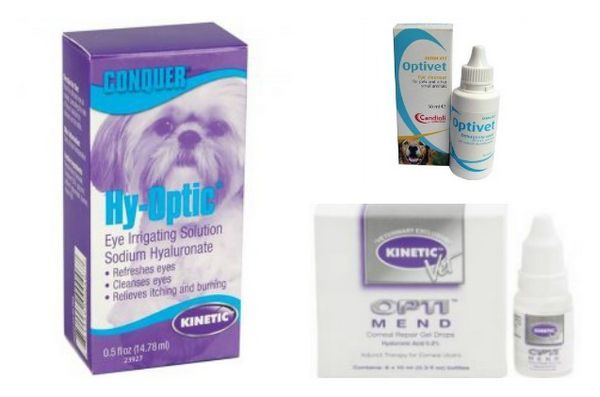 Rappel de gouttes pour animaux Kinetic en raison de la contamination bactérienne
