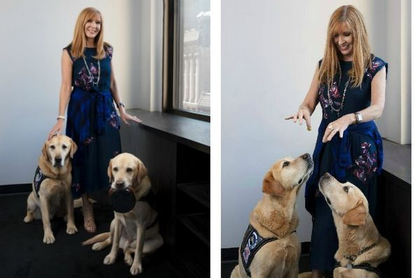 Nicole Miller a conçu des produits au profit du programme Puppies Behind Bars