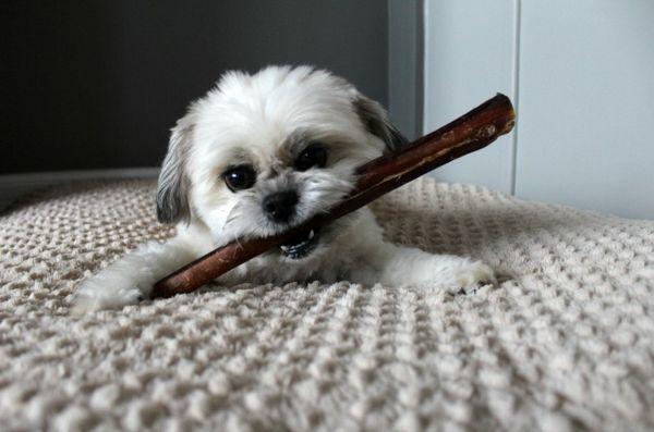 Oscar prend une bouchée des meilleurs bâtons