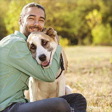 Parent animal domestique embrassant son chien