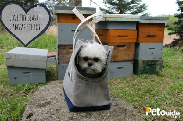 Critique: adore ton sac fourre-tout en toile de bête