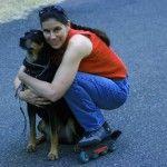 Roller avec votre chien