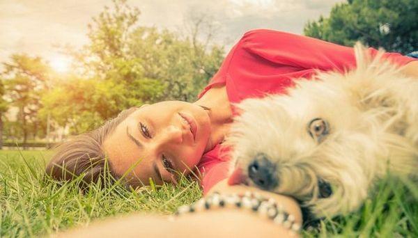 Psychologie homme-chien - Vous et votre chien êtes-vous un bon partenaire?