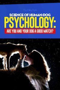 Science de la psychologie de l`homme et du chien