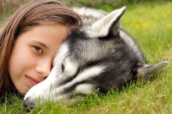 Etude: les chiens ont adapté leurs gènes pour évoluer avec l`homme