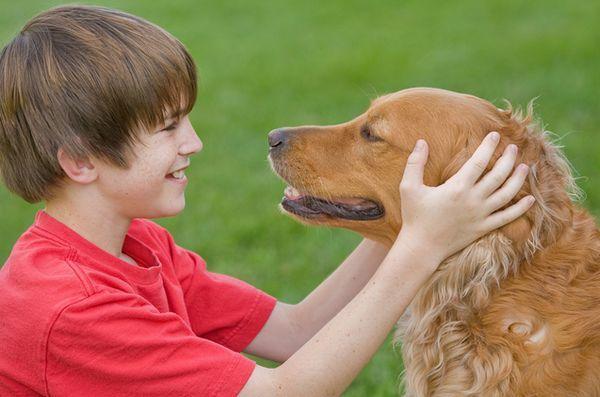 Étude: les chiens familiaux profitent aux enfants handicapés