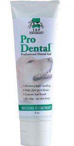 Le meilleur dentifrice pour chien pour chien